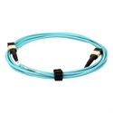 Picture of 12 Core OM4 MPO/MTP Trunk Cable